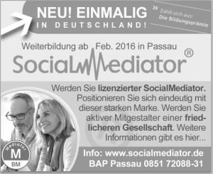 Social_Mediator_Thomas-Jennrich-300x245